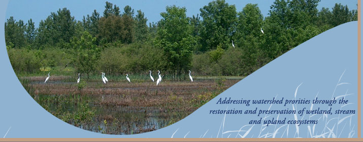 Addressing watershed priorities through the restoration and ...